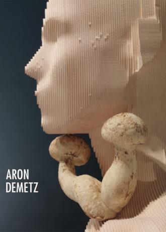 Aron Demetz