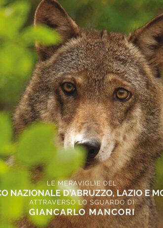 cover_Mancori_ParcoAbruzzo_web